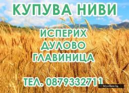 Купувам земеделска земя(ниви) в район Дулово | Исперих | Главиница